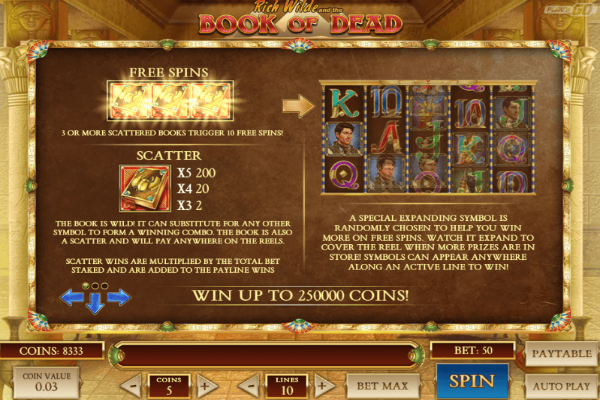 book of dead video slot